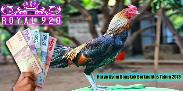 Harga Ayam Bangkok Berkualitas Tahun 2018