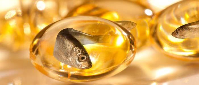 Khasiat Fish Oil Untuk Sabung Ayam Aduan