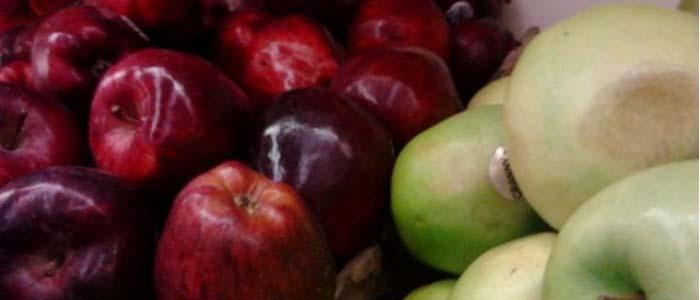 Manfaat Buah Apel Untuk Sabung ayam Aduan