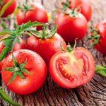 Manfaat Tomat Sebagai Pakan Tambahan Ayam Aduan