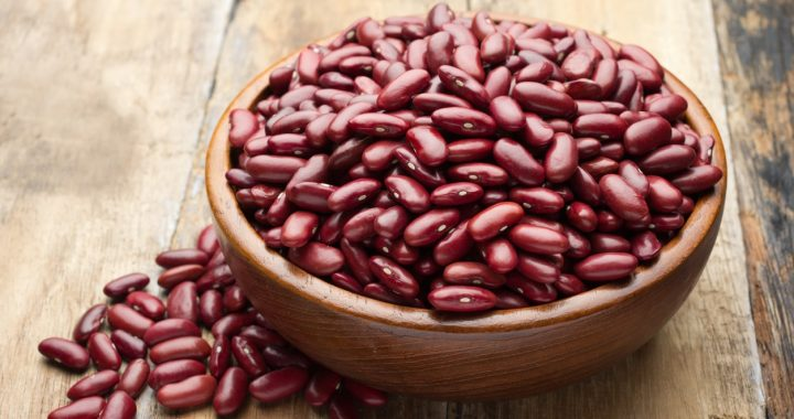 Manfaat-Pemberiam-Kacang-Merah-Untuk-Ayam-Aduan