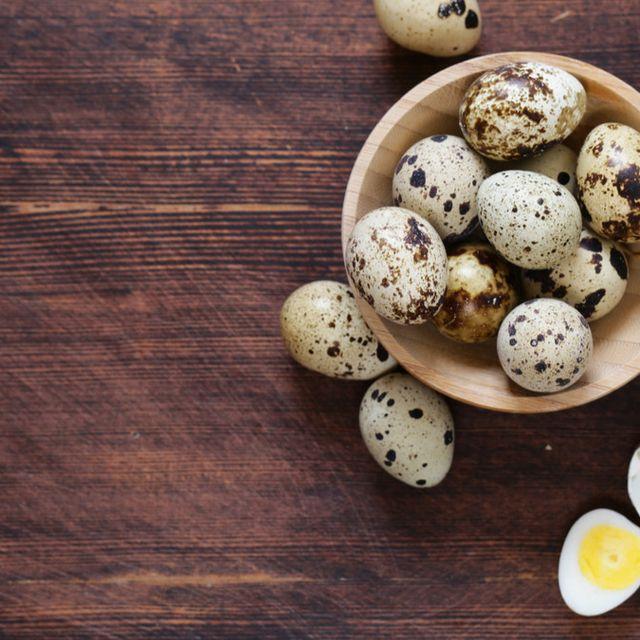 Manfaat-Manfaat-Telur-Puyuh-Untuk-Ayam-Aduan